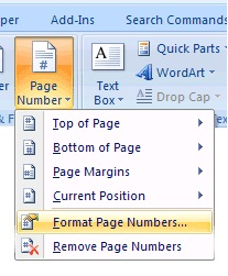 microsoft word 2007,format page numbers,techbuzzes