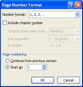 microsoft word 2007,page number format,page number format IN MICROSOFT WORD 2007,techbuzzes