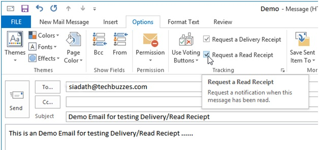 Options Tab on Outlook 2013, Techbuzzes