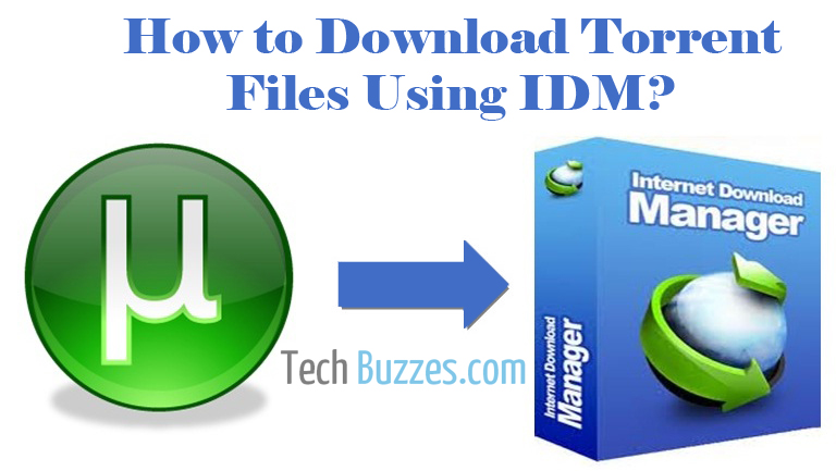 Download Torrent Files using IDM, Download Torrent Files, IDM download, TechBuzzes, How To Download Torrent Files using IDM,